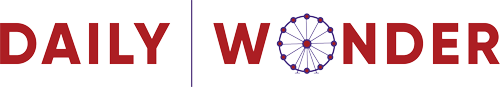 logo dailywonder